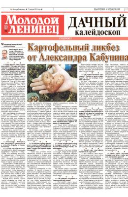 ml-2018_16-11_stranica_11